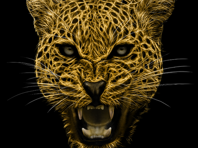 Leopard Illustration corona landing page freelance asset homepage design illustration wild animal leopard law savage law firm
