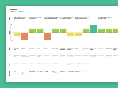 Experience Audit Poster customer experience experience customer journey map visualization user experience customer journey experience journey ux experience design experience audit