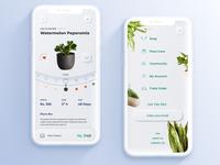 Plant App nature pot leaves branding flower ui  ux shopping app store clean ecommerce app app design conceptual planting ui mobile eco plant skeumorphic design app
