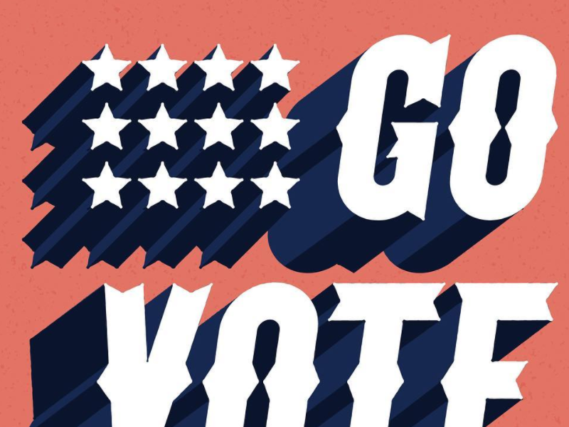 #GOVOTE lettering typography blue white red americana govote
