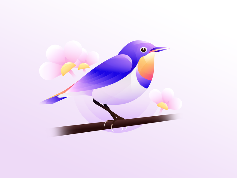 Bird bluethroat logo design illustration bird