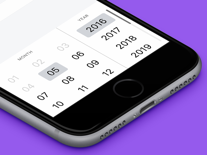 BT Date Picker credit card form braintree ios data input