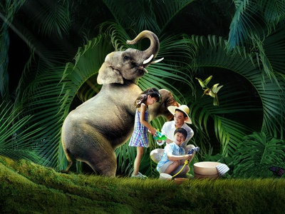 泰国-大象营