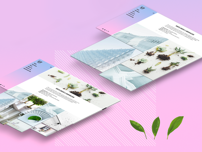 Panda   Portfolio Theme figma photos minimal art minimal blog blog mock structure uid uxd