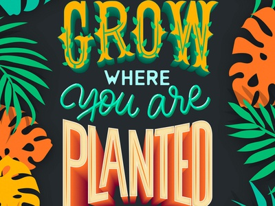 Grow where you are Planted letteringart 3d letters typespire modern lettering intuosprolettering tropical plants floral design strenght in letters typography illustration lettering