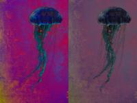 Medusa Poster | Magenta & Mauve