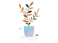 Potted Plant (detail)