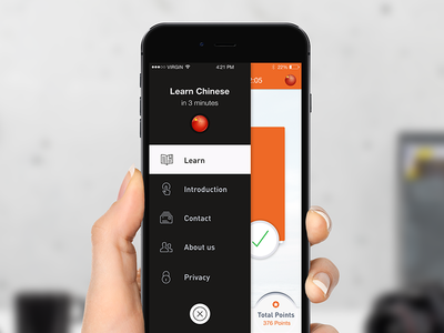 Language learning ios app learn chinese app ios education learning language iphone orange