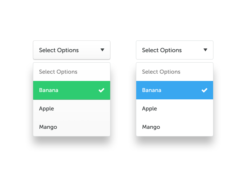 Dropdown select boxes input box options select dropdown