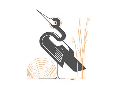 Bird reed egret