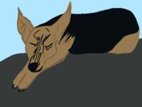 Sleeping Indy WIP