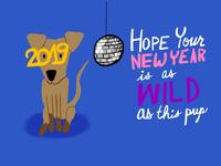 New Year Redux