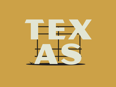 Texas Sign neon sign retro marquee sign typography texas branding vector illustration design