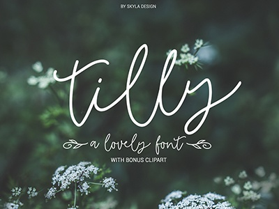 Tilly Romantic Wedding Font Skyla Design lovely thin monoline cursive script font wedding romantic