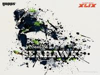 Super Bowl XLIX - Seattle Seahawks