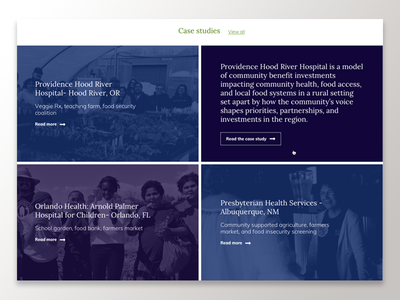 Case Studies Preview Gallery interaction site preview ui web