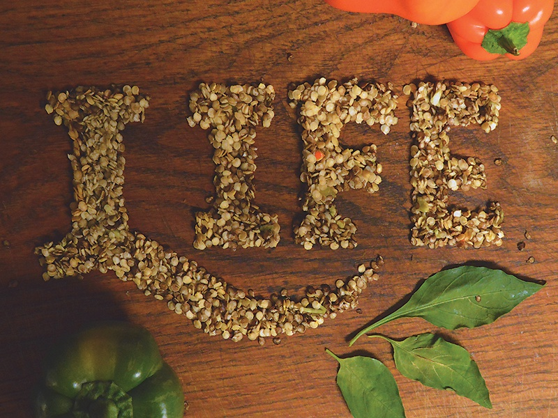 Life food made seeds lettering type life