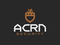 ACRN Security