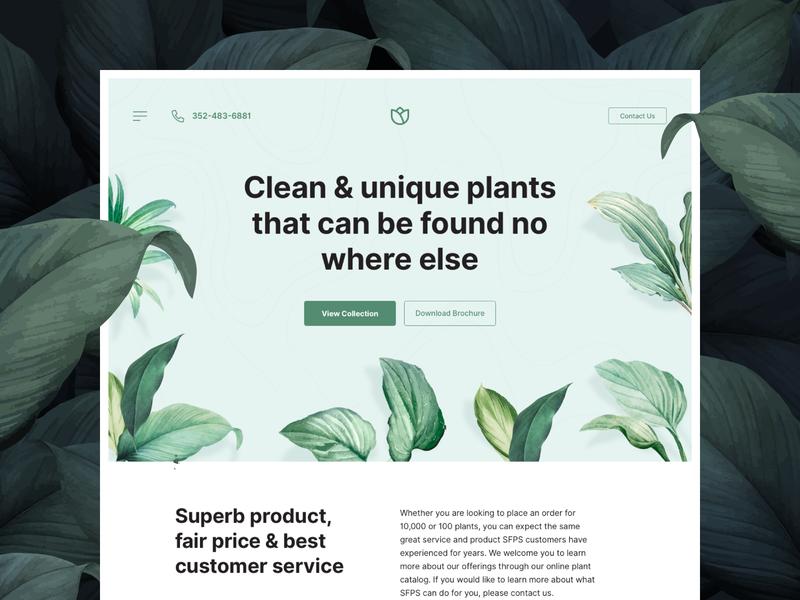 Unique Plant Supplier Website simple landingpage hero banner hero image webdesign website