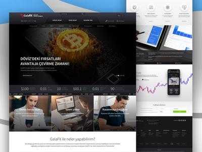 Turkish FxBroker Homepage Design