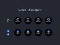 Voice 1