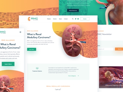 RMC Homepage Design doctor kidney medical digital agency dc web webdesign typograhy color homepage mobile website uitemplate uidesign alliance rmc