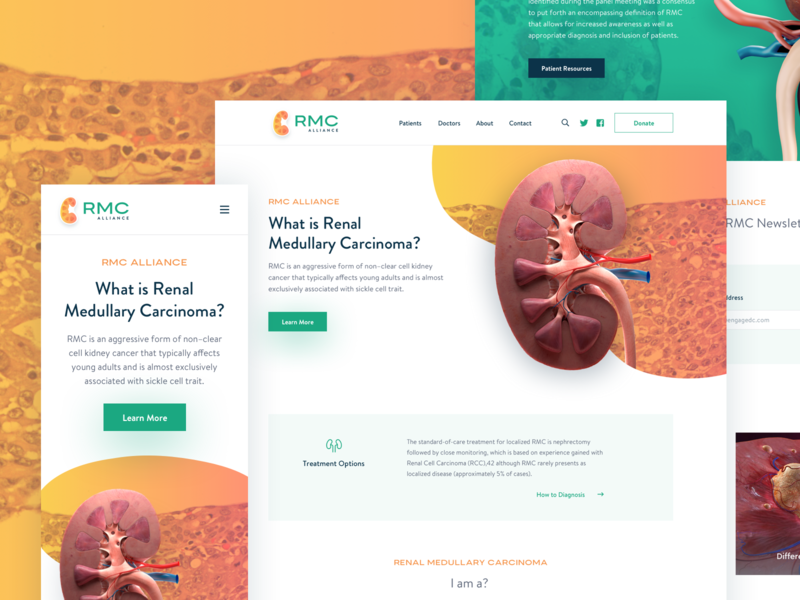 RMC Homepage Design doctor kidney medical digital agency dc web webdesign typograhy color homepage mobile website uitemplate uidesign alliance rmc