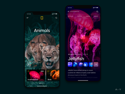 National Geographic / Mobile Concept digital animals interface discover national geographic mobile nature ux design ui