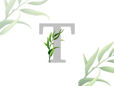 icon for trapezadoma.ru