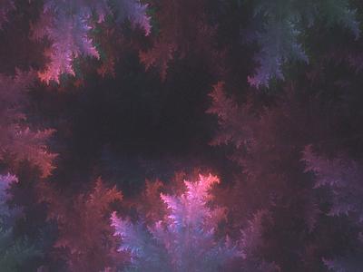 Fractal Generative Nature fractals openframeworks generative