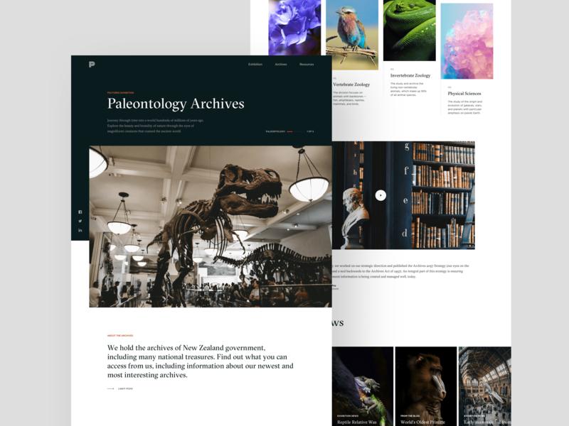 Museum Home minimalism paleontology website exhibit dinosaur black contrast archive museum landing page simple white clean