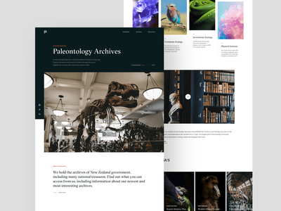 Museum Home minimalism paleontology website exhibit dinosaur black contrast archive museum landing page simple white clean
