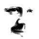 Steve Kelly