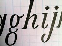 New Serif Font