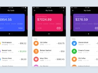 Wallet concept  screenshot 2x
