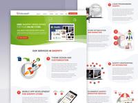 Shopify Development Landing Page