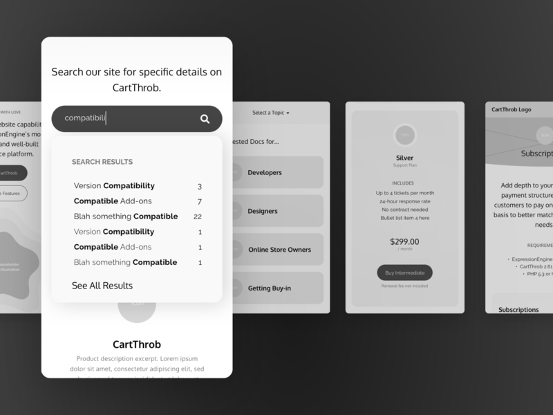CartThrob wireframes ux ui ecommerce business product design expressionengine ecommerce product wires wireframes