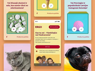 Smart Detector figma interaction mobile website webdesign layout web ui ux design