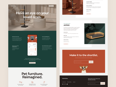 Feniska Landing Page 3d render layout web design ui design