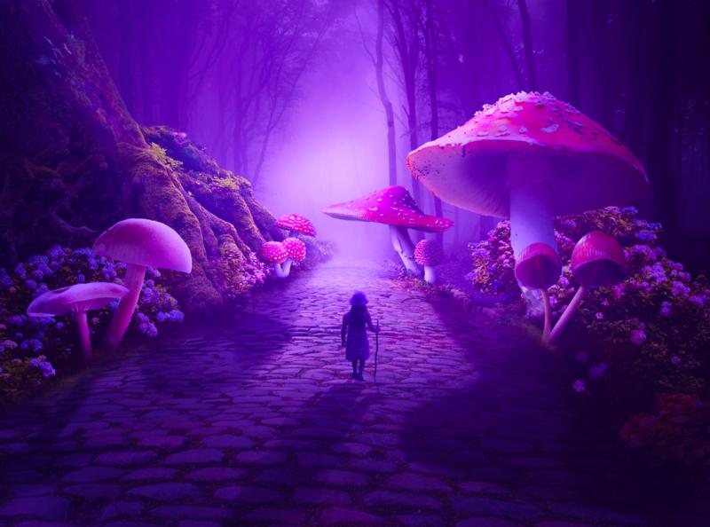 wondertrip tutorial surreal art surreal photomanipulation digitalart