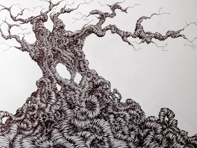 Old tree final