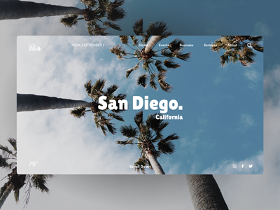 City of San Diego | Site Redesign ux ui interaction design web design