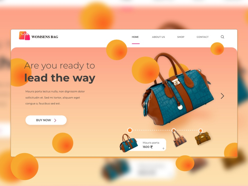Landing Page for Womesn Bag Website