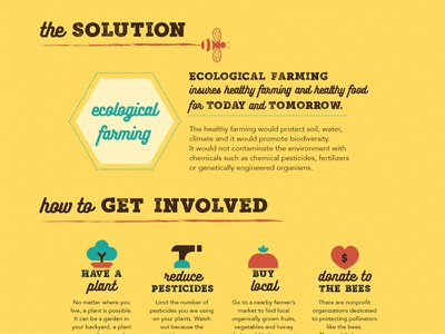 Save the Bees Infographic: The Solution survive local baltimore addy farming life nature humanity solution infographic save the bees bees