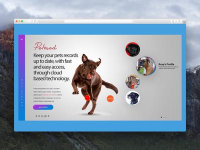 Web landing page design for app portal