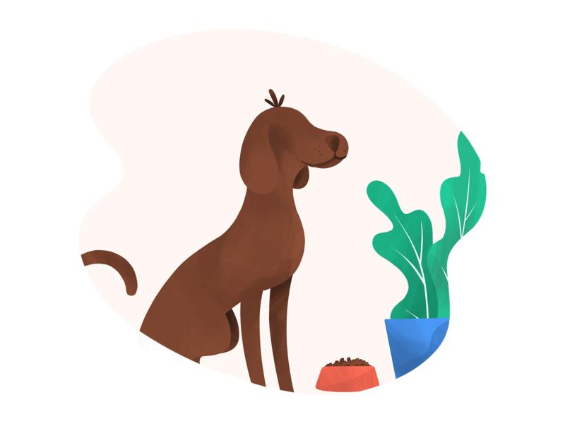 Dog pet plants dog procreate illustration anilemmiler