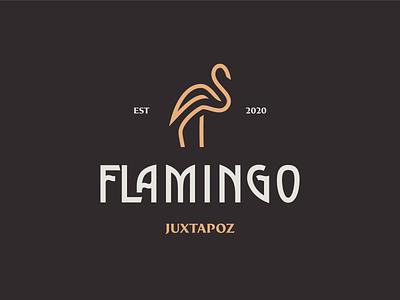 flamingo logo branding design logomark lettermark logodesign vector design clean logo design flamingos typography logo culture flamingo