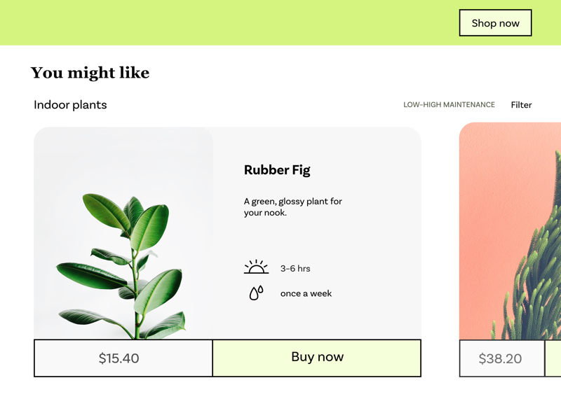 Plant recommendations page product web design web minimal