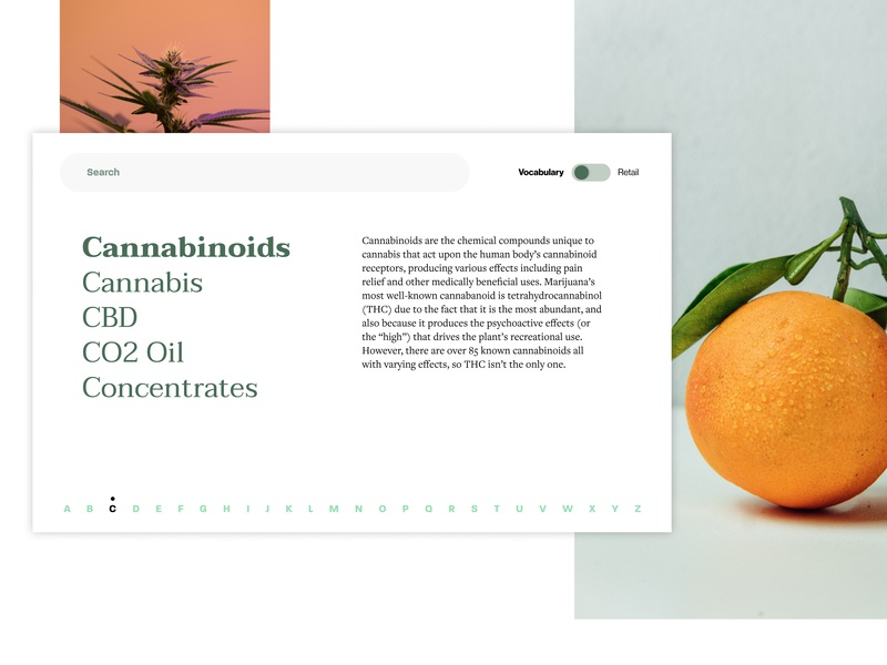 Cannabis glossary web page exploration glossary cbd hemp cannabis cannabis design clean ui minimalist figmadesign typography vector design ui web design web