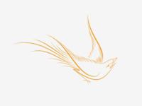 Bird logo option 1